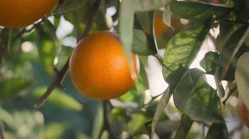 Simply Orange TV Spot, 'Basic Rule' - Thumbnail 4