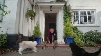 AmeriSave Mortgage TV Spot, 'Mike the Cat Lady Man: Refinancing' - Thumbnail 4