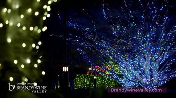 Brandywine Valley TV Spot, 'Holiday Traditions' - Thumbnail 3