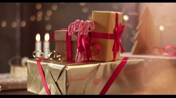 Boohoff Law TV Spot, 'Holidays: Special Gift' - Thumbnail 8