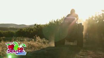Sage Fruit Apples TV Spot, 'An Apple a Day' - Thumbnail 7