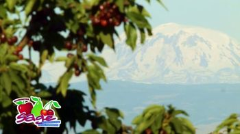 Sage Fruit Apples TV Spot, 'An Apple a Day' - Thumbnail 8