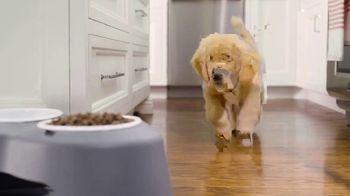 WeatherTech Pet Feeding System TV Spot, 'Safe and Stylish' - Thumbnail 3