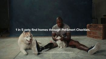 PetSmart Charities TV Spot, 'National Adoption Days: They Just Love' - Thumbnail 7