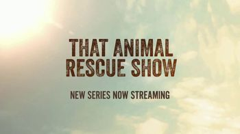 CBS All Access TV Spot, 'That Animal Rescue Show' - Thumbnail 9