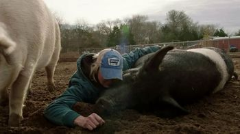 CBS All Access TV Spot, 'That Animal Rescue Show' - Thumbnail 4