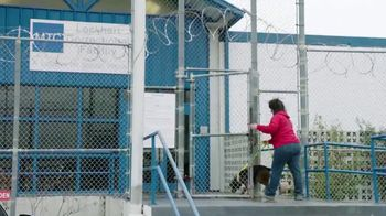 CBS All Access TV Spot, 'That Animal Rescue Show' - Thumbnail 7