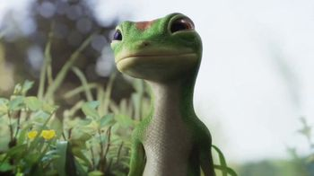 GEICO TV Spot, 'The Gecko Reveals
