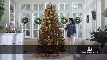 Balsam Hill TV Spot, 'Make Your Holiday Magical' - Thumbnail 1