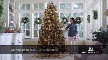 Balsam Hill TV Spot, 'Make Your Holiday Magical' - Thumbnail 2