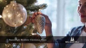 Balsam Hill TV Spot, 'Make Your Holiday Magical' - Thumbnail 3