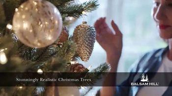 Balsam Hill TV Spot, 'Make Your Holiday Magical' - Thumbnail 4