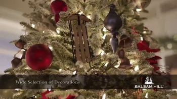 Balsam Hill TV Spot, 'Make Your Holiday Magical' - Thumbnail 5