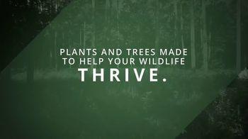 Wildtree TV Spot, 'Wildlife Nurseries' - Thumbnail 10