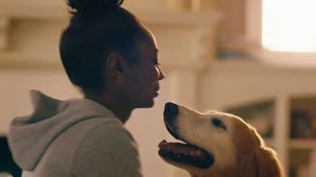 Bissell 2X Revolution Pet Pro TV Spot, 'Removes Stains'