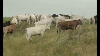 Piedmontese TV Spot, 'True Taste of Beef' - Thumbnail 4