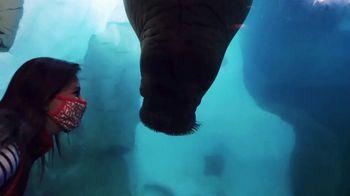 SeaWorld Christmas Celebration TV Spot, 'Annual Pass' - Thumbnail 1