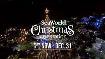 SeaWorld Christmas Celebration TV Spot, 'Annual Pass' - Thumbnail 2