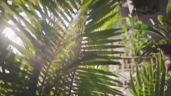 GoDaddy TV Spot, 'Where It All Started' - Thumbnail 3