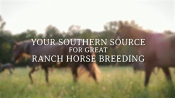 Lost Creek Cattle Company TV Spot, 'Southern Source' - Thumbnail 1