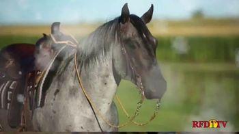 Shawnee Horse Sales TV Spot, '2020 Horse Sale' - Thumbnail 2