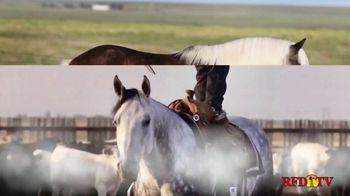 Shawnee Horse Sales TV Spot, '2020 Horse Sale' - Thumbnail 3
