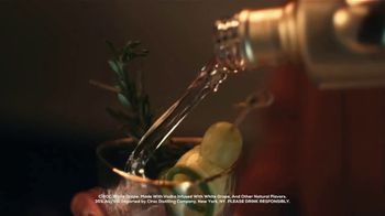 CÎROC White Grape TV Spot, 'Celebrate' Song by Oneness Of Juju - Thumbnail 4