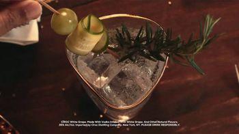 CÎROC White Grape TV Spot, 'Celebrate' Song by Oneness Of Juju