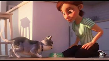 Hill's Pet Nutrition TV Spot, 'Moto: A Love Story'
