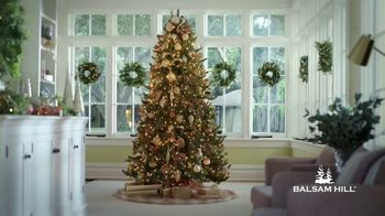 Balsam Hill Holiday Clearance TV Spot, 'This Tree' - Thumbnail 1