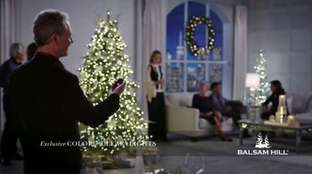 Balsam Hill Holiday Clearance TV Spot, 'This Tree' - Thumbnail 3