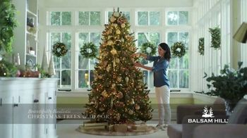 Balsam Hill Holiday Clearance TV Spot, 'This Tree' - Thumbnail 5