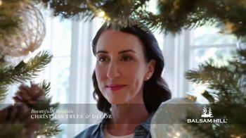 Balsam Hill Holiday Clearance TV Spot, 'This Tree' - Thumbnail 6