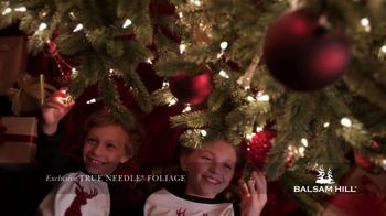 Balsam Hill Holiday Clearance TV Spot, 'This Tree' - Thumbnail 7
