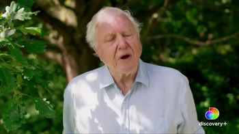 Discovery+ TV Spot, 'David Attenborough Collection' - Thumbnail 5
