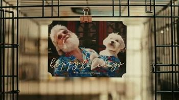 Shutterfly TV Spot, 'Let the Good Fly: Cards'