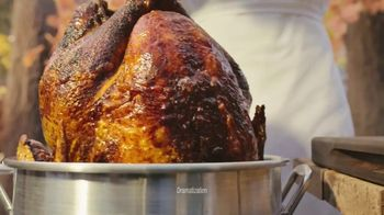 Arby's Deep Fried Turkey TV Spot, 'Dry and Underwhelming' Song by YOGI - 1277 commercial airings