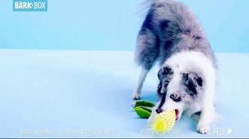 BarkBox TV Spot, 'Dogsgiving' - Thumbnail 4