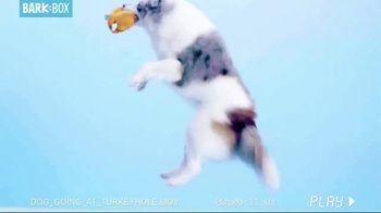BarkBox TV Spot, 'Dogsgiving' - Thumbnail 8