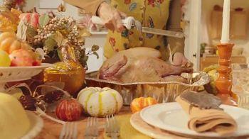 Arby's Deep Fried Turkey TV Spot, 'Regular Turkey' Song by YOGI - Thumbnail 2
