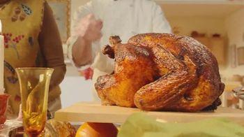 Arby's Deep Fried Turkey TV Spot, 'Regular Turkey' Song by YOGI - Thumbnail 4