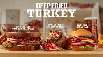 Arby's Deep Fried Turkey TV Spot, 'Regular Turkey' Song by YOGI - Thumbnail 7