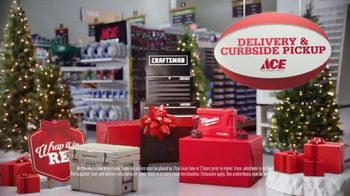 ACE Hardware TV Spot, 'Holidays: Perfect Present' - Thumbnail 8