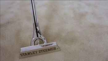 Stanley Steemer TV Spot, 'New Year: Our Goal' - Thumbnail 8