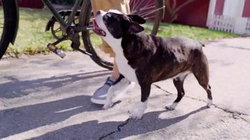 Bobs From SKECHERS TV Spot, 'PETCO Foundation: Over One Million Saved' - Thumbnail 3