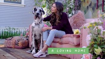 Bobs From SKECHERS TV Spot, 'PETCO Foundation: Over One Million Saved' - Thumbnail 4