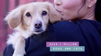Bobs From SKECHERS TV Spot, 'PETCO Foundation: Over One Million Saved' - Thumbnail 9