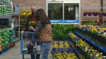 Walmart TV Spot, 'Plant'