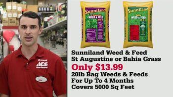 ACE Hardware TV Spot, 'Sunniland Weed & Feed: $13.99' - Thumbnail 7