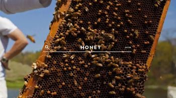 National Geographic Magazine TV Spot, 'Start Here: Bees' - Thumbnail 3